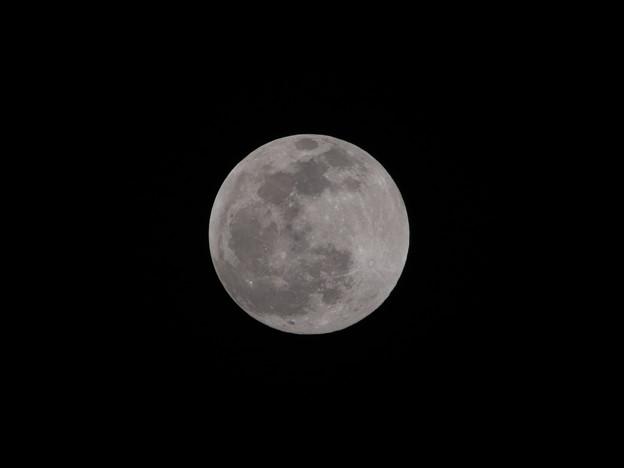Photos: 令和2年の初満月