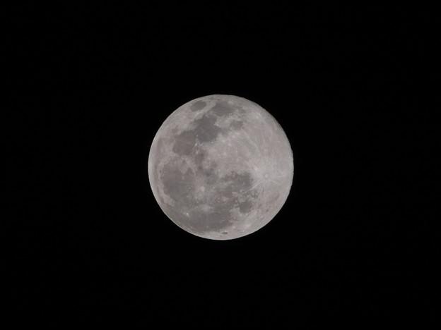 今日(2月9日)の満月