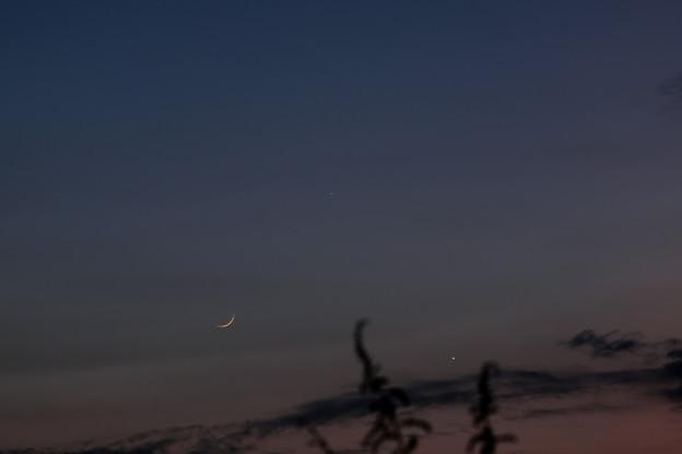 Photos: 三日月と水星と金星