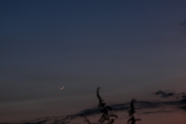 三日月と水星と金星