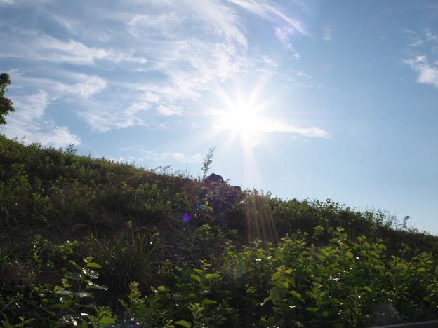 日食中の風景