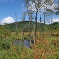 秋の霧ヶ谷湿原にて(1)