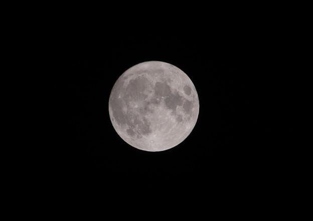 Photos: 今日(10月1日)は中秋の名月