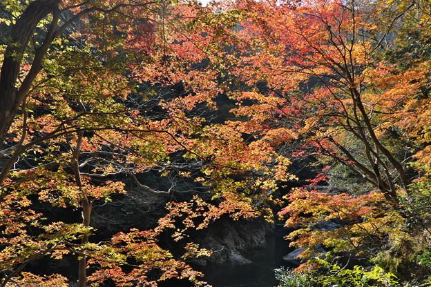 秋の三段峡(2)