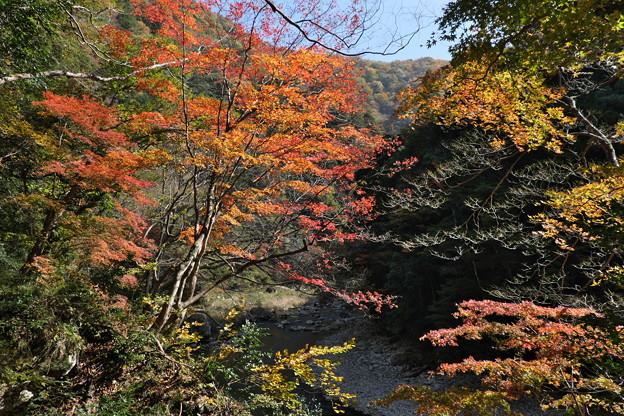 秋の三段峡(1)