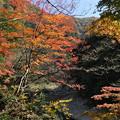 Photos: 秋の三段峡(1)