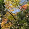 Photos: 秋の三段峡(3)