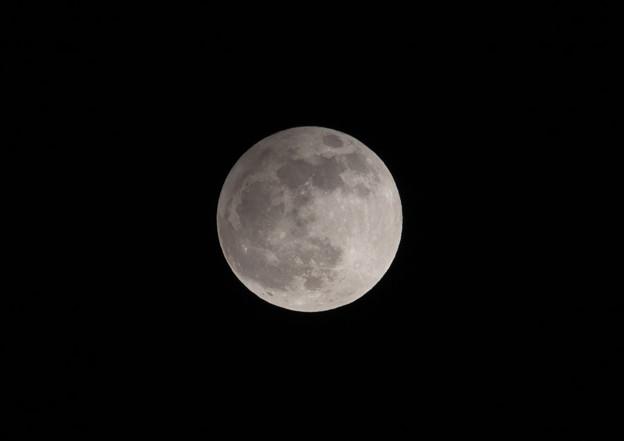 今日(11月30日)はビーバームーンで半影月食