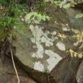 Photos: DSCN2192岩のコケ