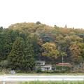 Photos: DSCN2214紅葉