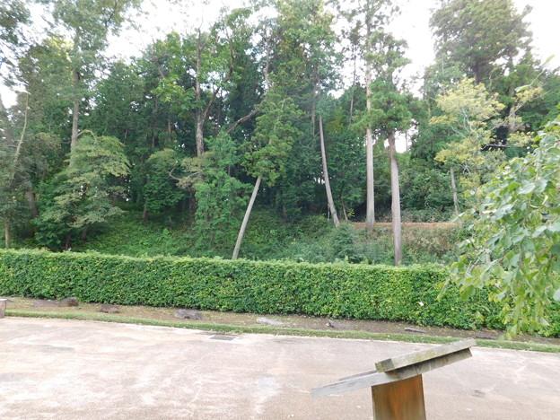 徳川ミュージアムの森・公園センタDSCN9267