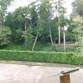 Photos: 徳川ミュージアムの森・公園センタDSCN9267