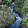 写真: 竜頭の滝始まり(上流1)