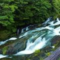 Photos: 竜頭の滝上流(2)