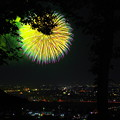 Photos: 夜空に咲く一輪の花