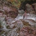 流れ落ちる滝水
