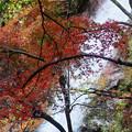 Photos: 滝の勢い!