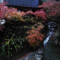 秩父華厳の滝茶屋さんと紅葉