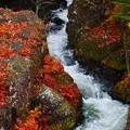 竜頭の滝上流(1)