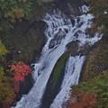 Photos: 下段の滝