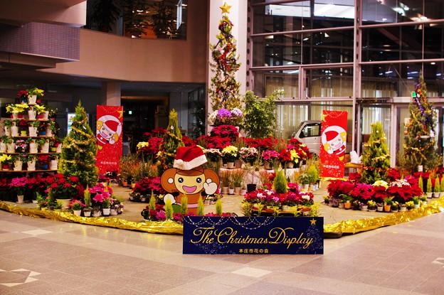 クリスマスディスプレー2020
