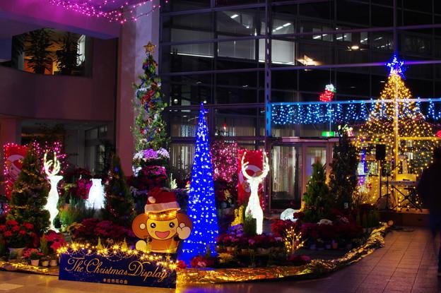 クリスマスディスプレー(2)