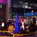 Photos: クリスマスディスプレー(2)