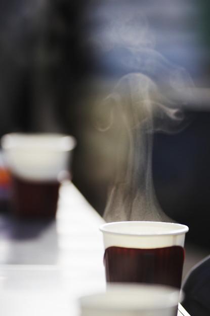Photos: お茶ですよ~