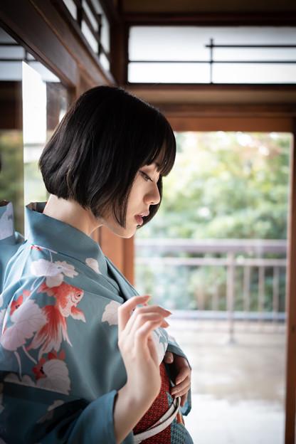 Photos: 金魚の恋