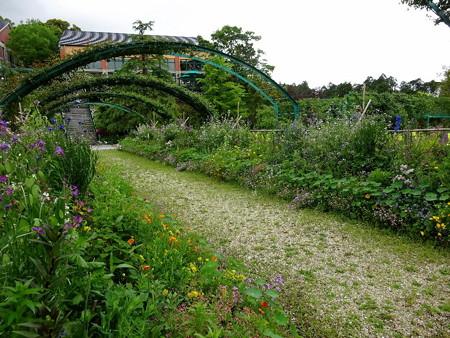 180425-13花の庭