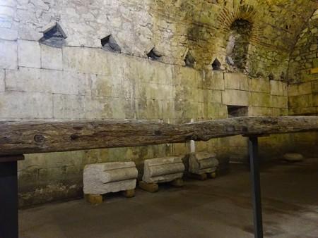 180705-11ローマ時代の木