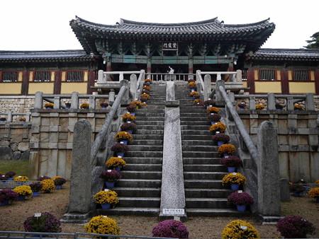 181113-53紫霞門