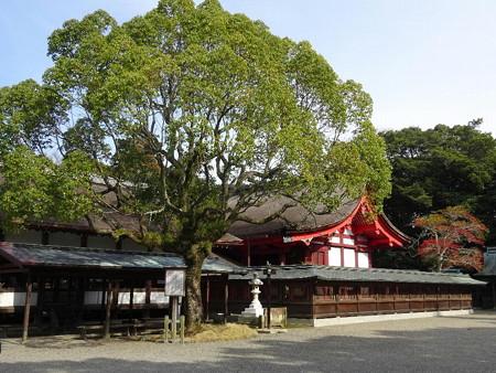 190309-07本殿・拝殿