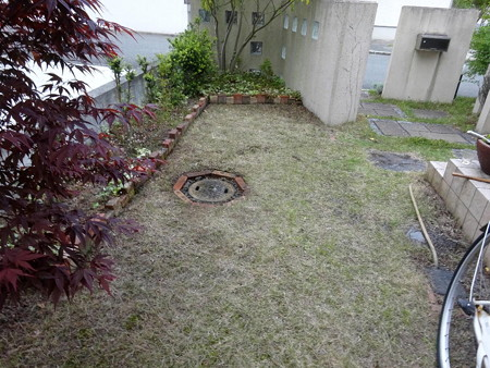 190508第1庭園