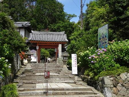 190604-02矢田寺