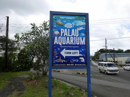 200223-06水族館はこっち