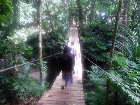 200224-11吊り橋を渡り