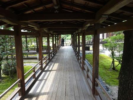 200803-19大覚寺