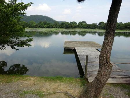 200803-21大沢池