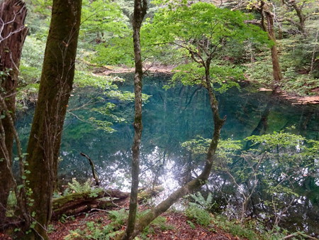 201016-11沸壺の池