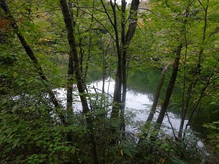 201016-13中の池