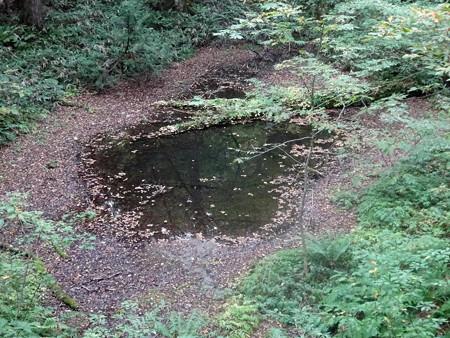 201016-14がま池
