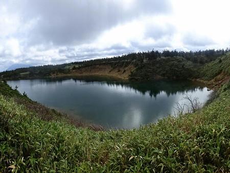 201018-11ガマ沼
