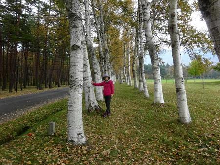 201019-13白樺林にて