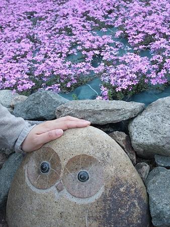 2009年4月29日三田花のじゅうたん12