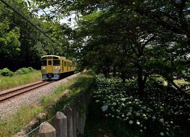 さあ来るぞ花と一緒に電車待ち