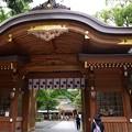 Photos: 拝殿の前あたりに大きな茅の輪