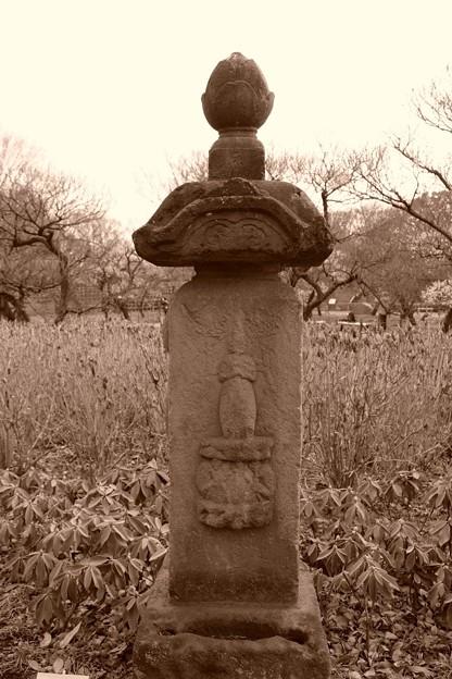 写真: いつの日に訪れたのか田舎道