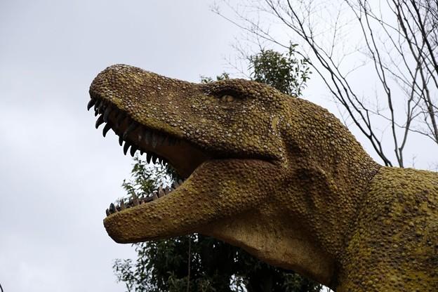 ティラノザウルス登場