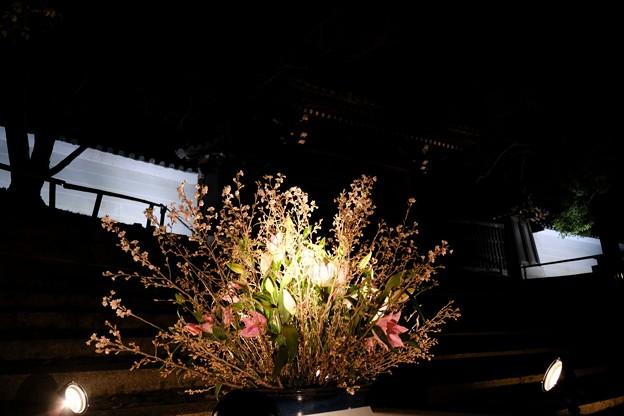 生け花のライトアップ